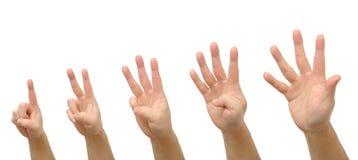 рука один 5 жестов к Стоковые Фотографии RF