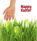Рука достигая для пасхального яйца Стоковое Изображение