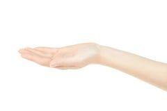 Рука открытая, пустая ладонь женщины вверх Стоковое фото RF