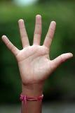 рука открытая стоковое фото
