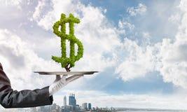 Рука официантки представляя знак доллара на подносе Стоковые Изображения