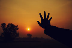 рука одно Стоковые Фотографии RF