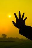 рука одно Стоковые Изображения RF