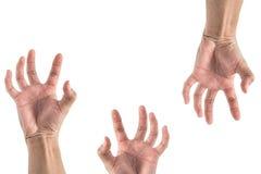 Рука протягивая что-то, выглядеть как комплект зомби Стоковое Фото