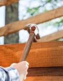 Рука работника бить молотком ноготь молотком на рамке тимберса Стоковое Изображение RF
