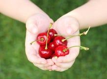 рука ребенка вишен некоторая помадка Стоковая Фотография RF
