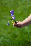 Рука ребенка с цветками Стоковое Изображение RF