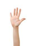 Рука ребенка стоковая фотография rf