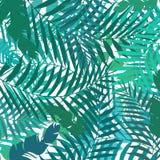 Рука рисуя ботаническую экзотическую картину с зеленой ладонью выходит Su иллюстрация штока