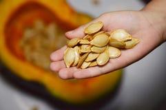 Рука семян и младенца Стоковые Фото