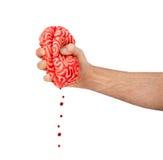 Рука сжимает резиновый мозг Стоковое Изображение