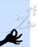 Рука (силуэт) держит ветвь с листьями Стоковое Фото