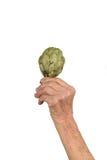 Рука старших женщины и артишока Стоковая Фотография