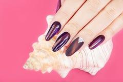 Рука с длинными искусственными деланными маникюр ногтями и seashell Стоковые Изображения RF