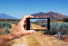 Рука с мобильным телефоном стоковые фото
