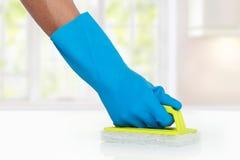Рука с перчаткой используя зеленую губку чистки, который нужно очистить вверх стоковая фотография rf