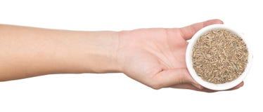 Рука с тимоном стоковые изображения rf