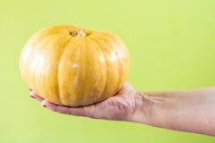 Рука с тыквой Стоковые Фотографии RF