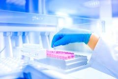 Рука ученого держа образец в специальной лаборатории, медицинской окружающей среде, деталях больницы Стоковое Фото