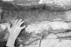Рука человека льнет к уступу на камне покрытый снежок утеса стоковые фотографии rf