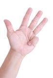 Рука человека. Стоковое фото RF