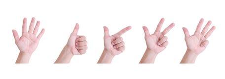 Рука человека. Стоковая Фотография RF