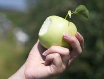 рука яблока Стоковое Изображение RF