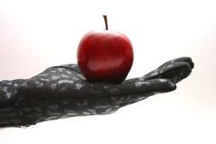 рука яблока Стоковая Фотография RF