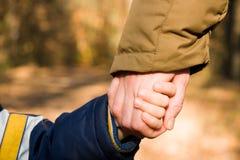 рука держит сынка мати Стоковое Фото
