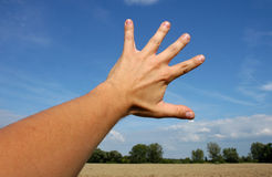 рука Стоковые Фотографии RF