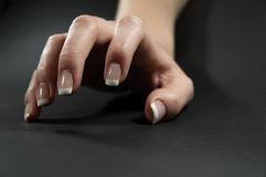 рука 2 женщин Стоковое Изображение