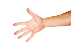 рука Стоковые Изображения RF