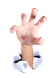 рука Стоковое Изображение RF