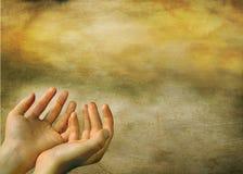 рука beautifull Стоковые Изображения