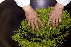 Рука processing чая Стоковое Фото