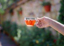 Рука ` s дамы держит горячее красное питье от ягод на естественной запачканной предпосылке Свежий чай одичалой клубники Стоковые Фотографии RF