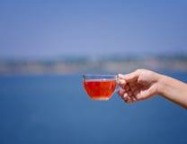 Рука ` s дамы держит горячее красное питье от ягод на предпосылке запачканной рекой Свежий чай одичалой клубники Стоковые Изображения RF