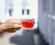 Рука ` s дамы держит горячее красное питье от ягод на предпосылке запачканной улицей Свежий чай одичалой клубники Стоковое Фото