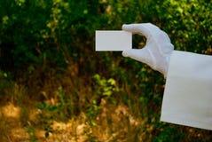 Рука ` s кельнера в белой перчатке держит бумажную визитную карточку на открытом воздухе стоковые фотографии rf