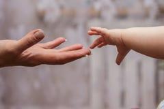 Рука ` s младенца достигая до своего Стоковые Фото