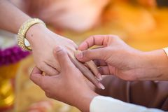 Рука ` s невесты Стоковое фото RF