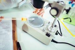 Рука s ученого в пальто лаборатории получает готовой начать микроскопическое исследование Стоковое Изображение RF
