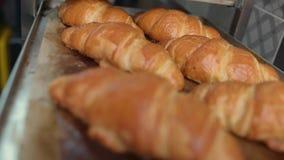 Рука ` s хлебопека принимает вне железный лист выпечки с свежими хлебобулочными изделиями видеоматериал