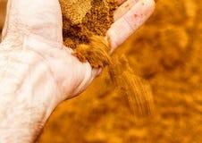 Рука ` s людей показывая песок Стоковые Изображения RF