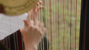 Руки арфиста играя арфу Конец-вверх видеоматериал