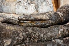 Руки Будды предусматриванные в мхе, Wat Mahathat, парке Sukhothai историческом, Таиланде Стоковая Фотография RF