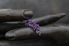 руки Будды Стоковые Изображения RF