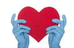 2 руки в голубых медицинских перчатках держат сердце Стоковые Фотографии RF