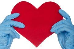 2 руки в голубых медицинских перчатках и сердце Стоковые Изображения RF