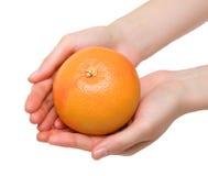 руки грейпфрута Стоковое Изображение RF